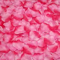 100 Rosenblätter Rosenblüten Hochzeit Deko Valentinstag Rose - rosa