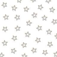 50 Perlen Sterne Tischdeko für Geburtstag Party Weihnachten Basteln - silber