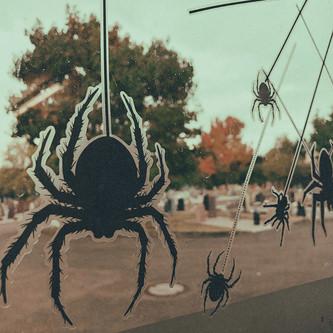 15 Spinnen Sticker Aufkleber realistisch schaurig haarig Halloween Deko